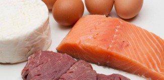 Source de proteines