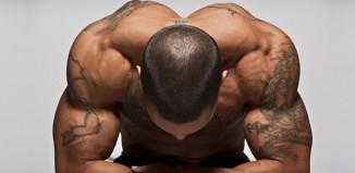 combien muscle