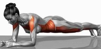 Muscler abdos profond